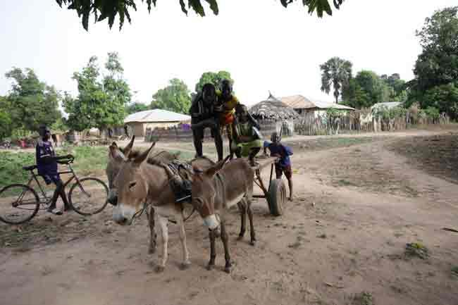 enfants-et-charrette-aux-ânes